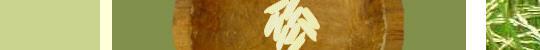 [Xpress] FreeRice, des grains de riz pour ameliorer votre vocabulaire